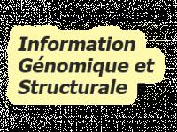 Information Génomique & Structurale